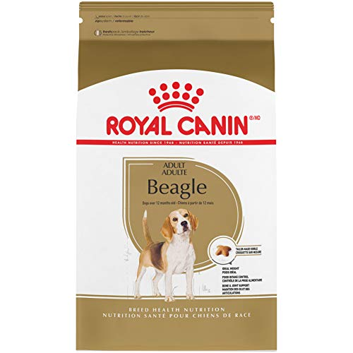 Royal Canin Beagle Adult Dry Dog Food