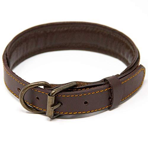 Logical Leather Padded Dog Collar