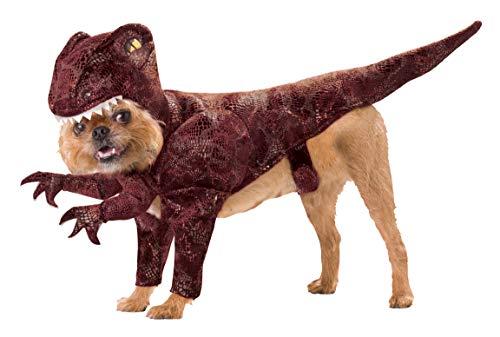 Animal Planet Raptor Dog Costume