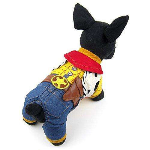 Niko The Cowboy Costume