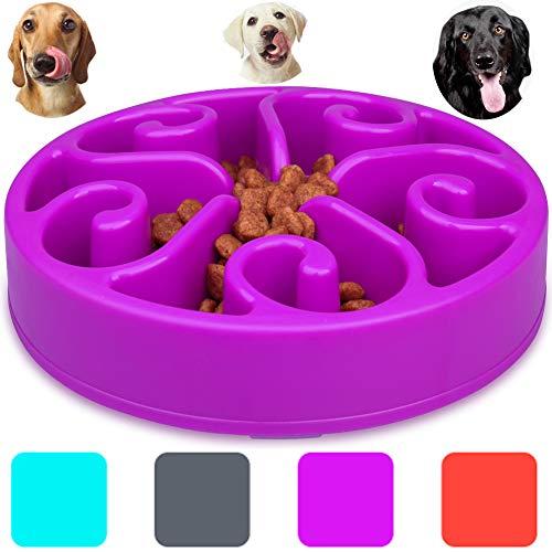 Wangstar Slow Feed Dog Bowl
