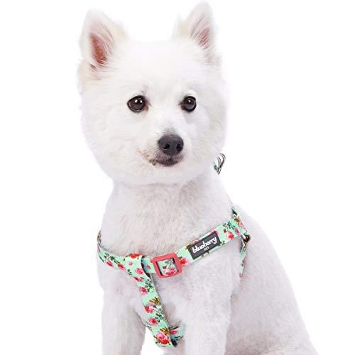 Blueberry Pet Floral Prints Dog Harness