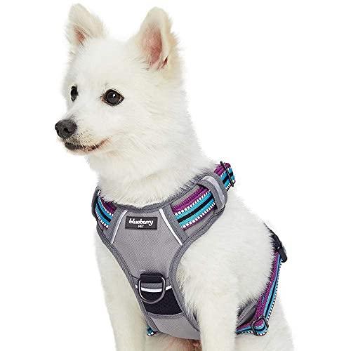 Blueberry Pet 3M Reflective Stripe Dog Harness
