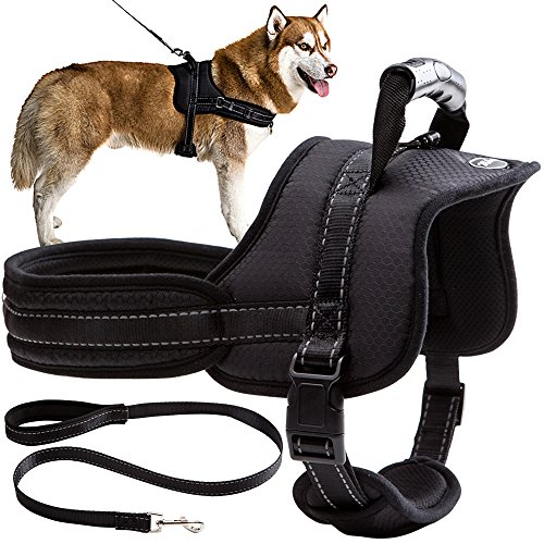 Mihachi No Pull Dog Harness