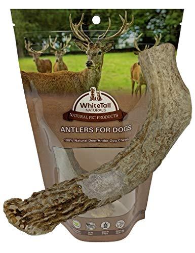 WhiteTail Naturals Large Deer Antler