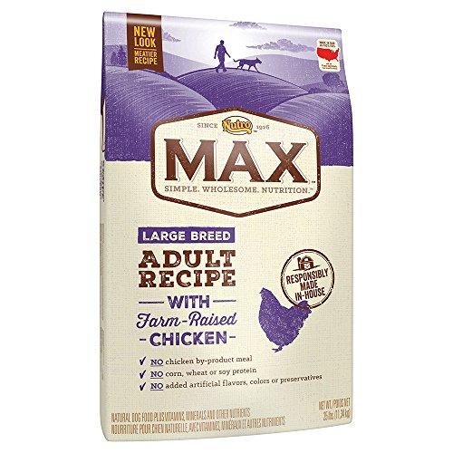 Nutro Max Dry Dog Food