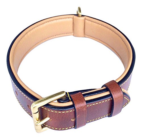 Soft Touch Collars Real Leather Padded Dog Collar