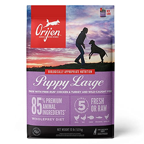ORIJEN Dog Large Breed Puppy Recipe, 13lb, High-Protein Grain-Free Dry Puppy Food, Packaging May...