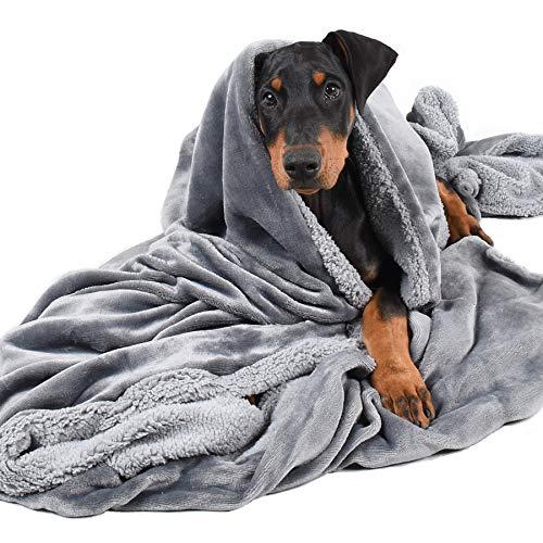 Pawsse Dog Blanket
