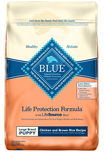 Blue Life Protection Large Breed Puppy Formula