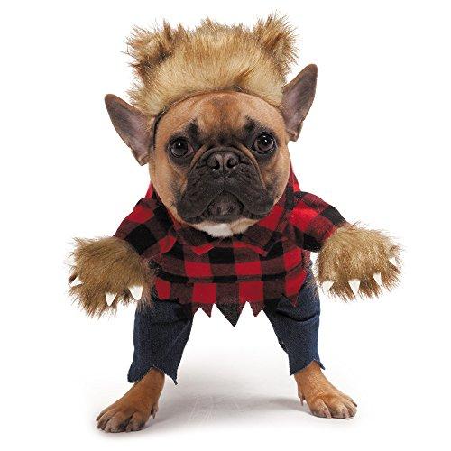 Zack & Zoey Werewolf Dog Costume