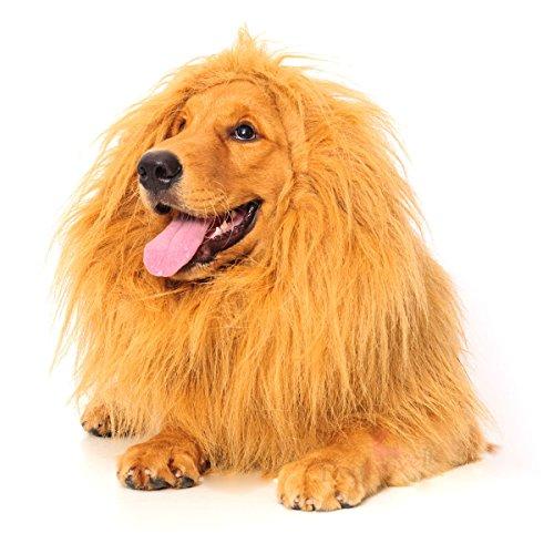 Dogloveit Lion Mane Costume