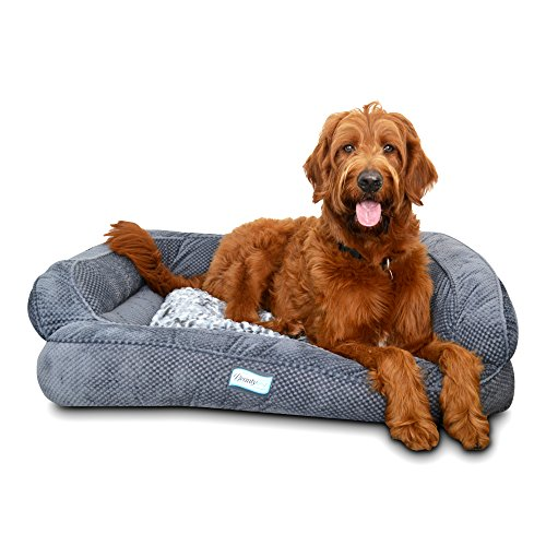 Simmons Beautyrest Orthopedic Memory Foam Dog Bed