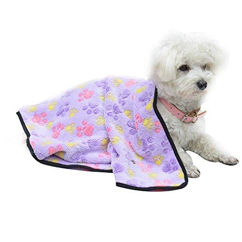 Expawlorer Pet Blanket