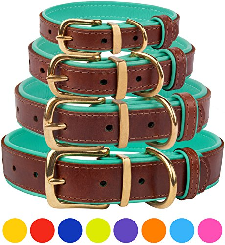 CollarDirect Leather Dog Collar With Brass Buckle