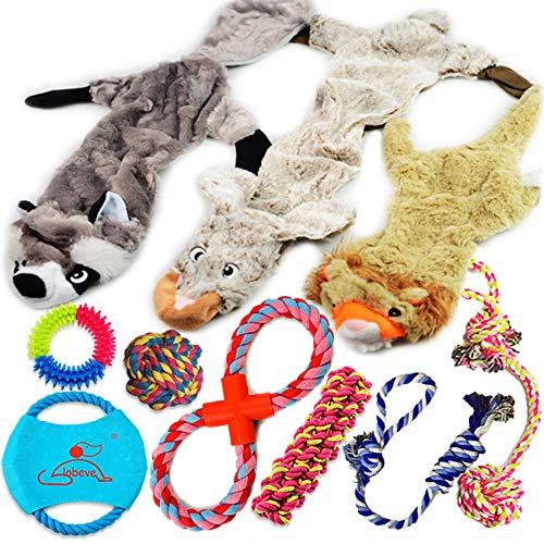 Lobeve Dog Toys 10 Pack Gift Set
