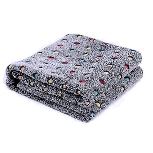 PAWZ Road Soft Fleece Fabric Dog Blanket