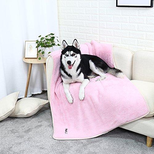 PAWZ Road Large Fluffy Dog Blanket