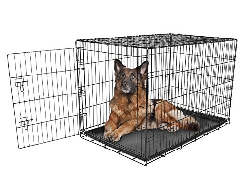 Carlson Pet Products Foldable Single Door Metal Dog Crate