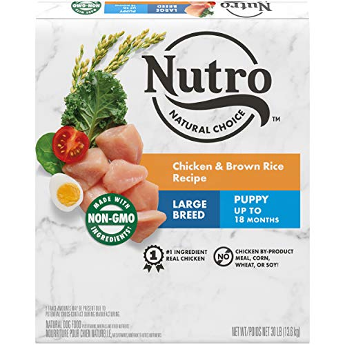 NUTRO Large Breed Dry Puppy Food