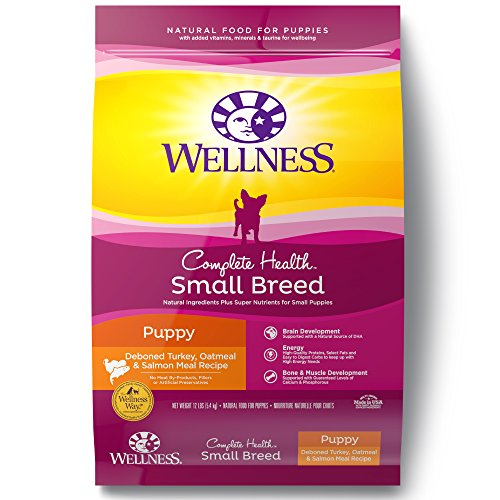 Wellness Complete Health Small Breed Dry Puppy Food