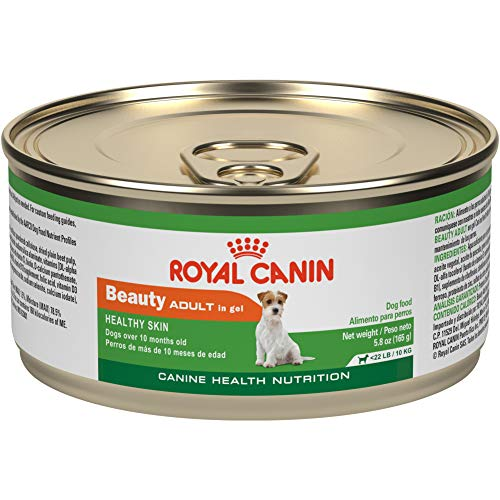 Royal Canin Adult Beauty Canned Dog Food