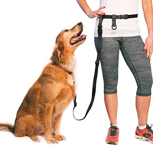 The Buddy System Adjustable Hands Free Leash