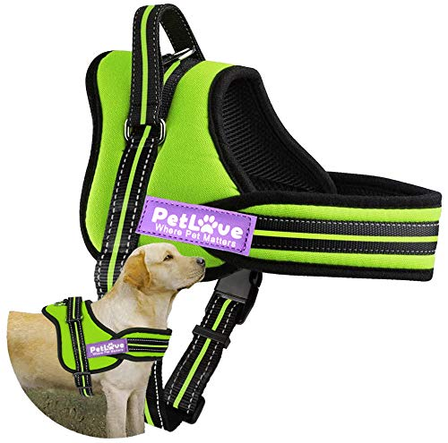 PetLove Padded No Pull Dog Harness