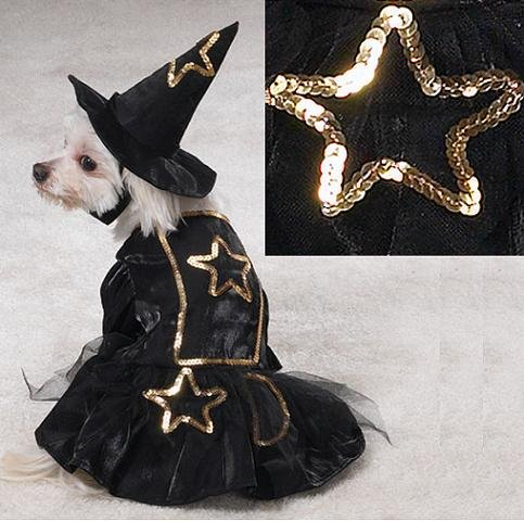 Casual Canine Sequins & Lace Witch Costume