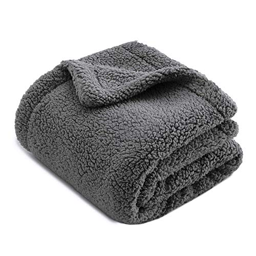 Chee Ray Extra Thick Snugly Sherpa Fleece Blanket