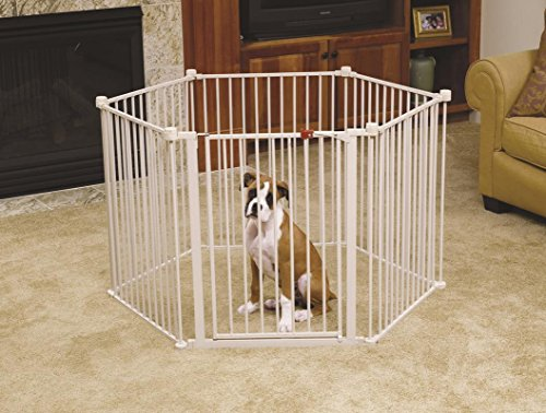 Carlson Convertible Pet Yard