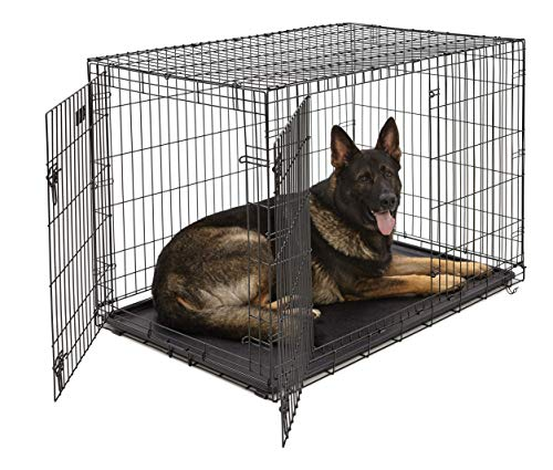MidWest XL Dog Crate