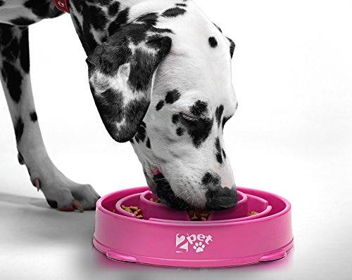 2PET Slow Feed Dog Bowl