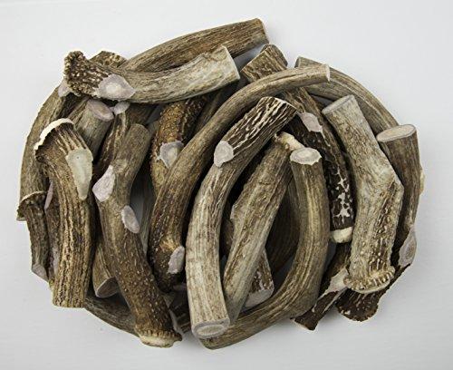 Antler Man Premium Jumbo Deer Antler Pieces