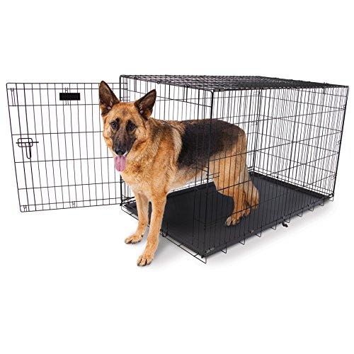 Aspen Pet Home Training Wire Crate