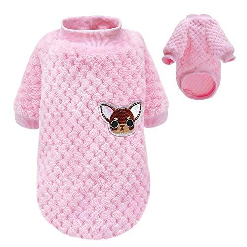 Pet Artist Sweater