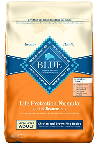 Blue Life Protection Large Breed Formula