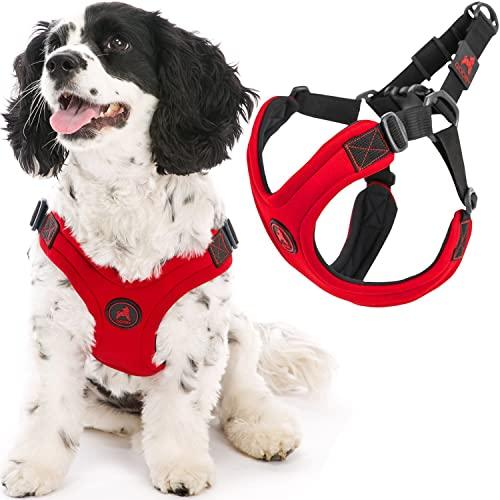 Gooby Escape Free Sport Dog Harness