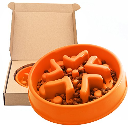 Simply Pets Online A-Maze-In-A-Bowl