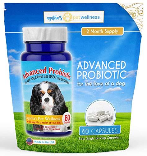 Agatha's Apothecary Advanced Probiotic