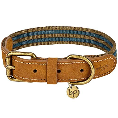 Blueberry Pet Genuine Leather and Polyester Dog Collar