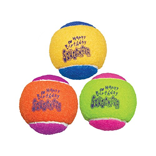 KONG Air Dog Squeakair Birthday Balls