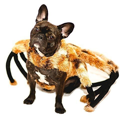 Nicky Bigs Novelties Tarantula Costume