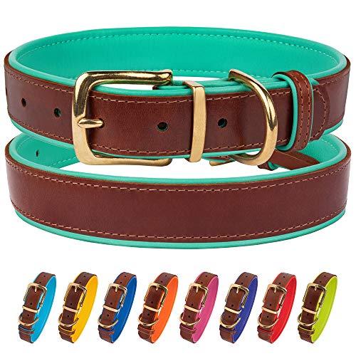 CollarDirect Leather Dog Collar With Brass Buckle