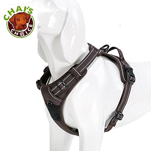 Chai's Choice Best Front Range Harness