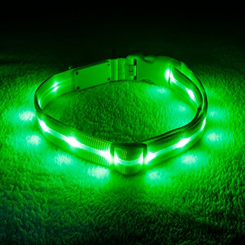 Blazin' Safety LED Dog Collar