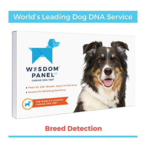 Wisdom Panel 3.0 Breed Identification Dog DNA Test Kit
