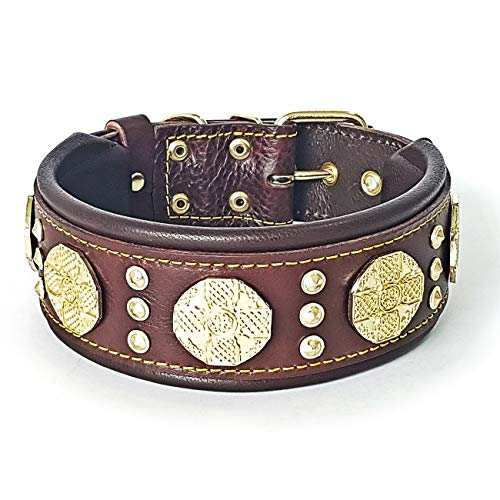 Bestia Maximus Leather Dog Collar