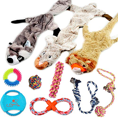 Lobeve Dog Toys 10 Pack Gift Set