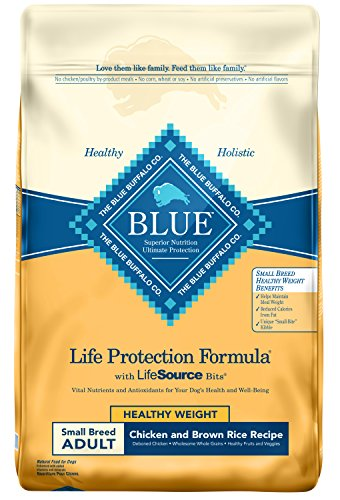 Blue Life Protection Formula Dry Dog Food